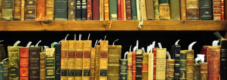 ordinare e catalogare: il vizio dei bibliofili