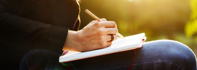 sinossi incubo scrittore